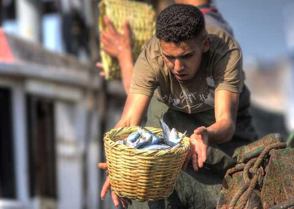Fischfang am Hafen von Agadir