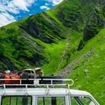 Tipps gegen Reiseübelkeit