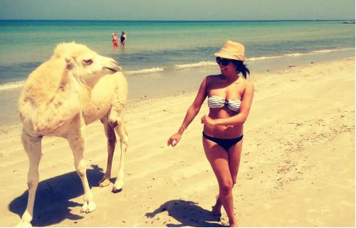 Bekanntschaft mit einem Kamel am Strand...