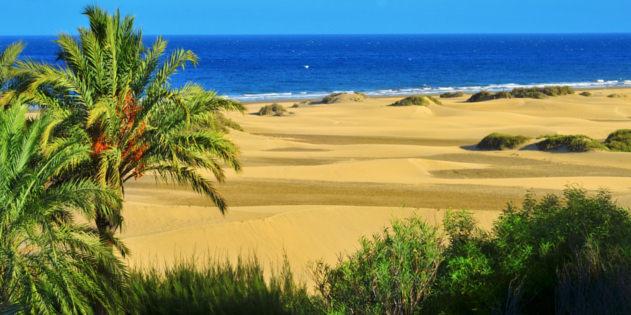 Sanddüne Auf Gran Canaria