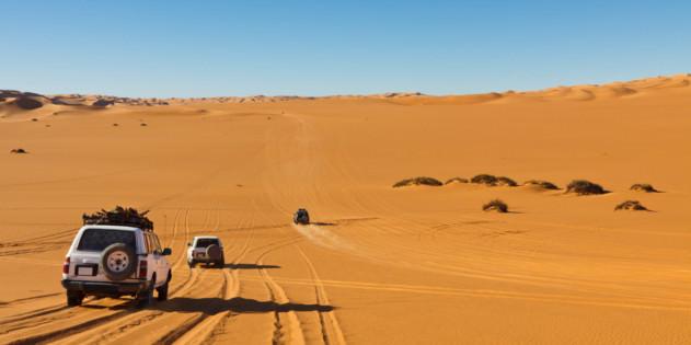 Safari mit dem Jeep