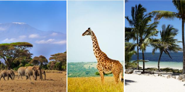 Kenia Tier-und Naturwelt