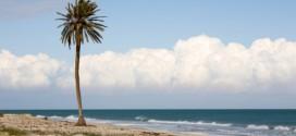 Urlaub in Tunesien: Vom Mittelmeer bis in die Wüste
