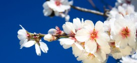 Urlaub im April: Die besten Last-Minute Ziele