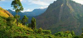 Impfungen und medizinische Hinweise für Urlaub in Sri Lanka