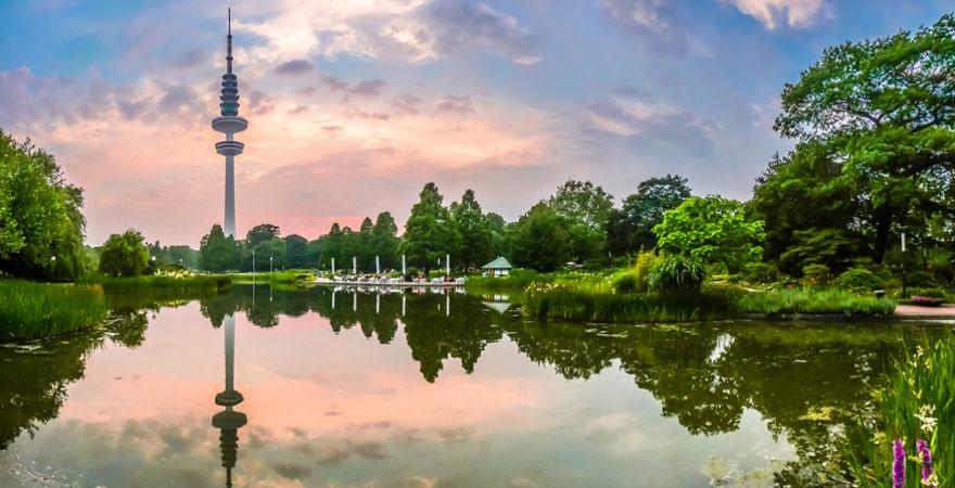 Park mit Blick auf Fernsehturm