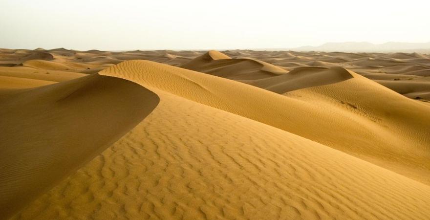 Wüste-RAK