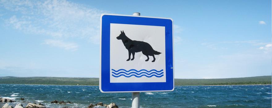 Schild mit Hund am Strand
