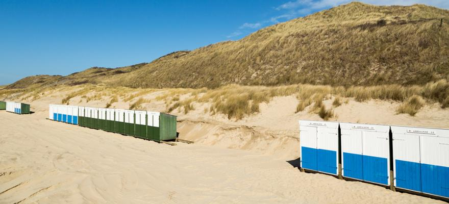 Hundestrand in Zouteland Holland
