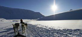 Winterurlaub mit Hund: Die schönsten Regionen und alles, was ihr wissen solltet
