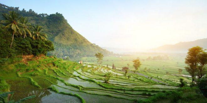 Indonesien Urlaubsguide – Reisetipps rund um den abwechslungsreichen Inselstaat