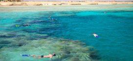 Schnorchelurlaub in Marsa Alam– traumhafte Unterwasserwelten im Orient