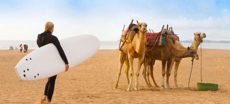 Surfen in Taghazout