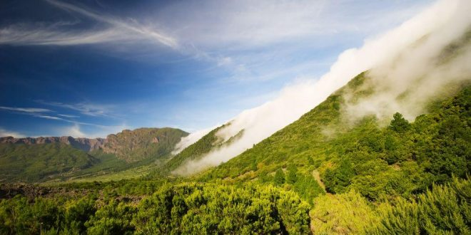Die Kanaren: Reisetipps für einen Urlaub mit Sonnengarantie