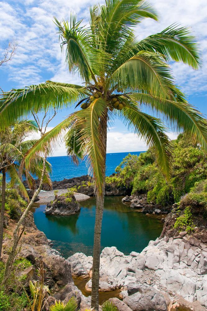 insel-maui-hawaii