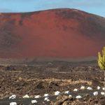 Roter Berg auf Lanzarote in Spanien