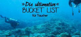 Die ultimative Bucket List für Taucher