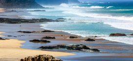 Reisetipps für Fuerteventura – die Trauminsel im Atlantik