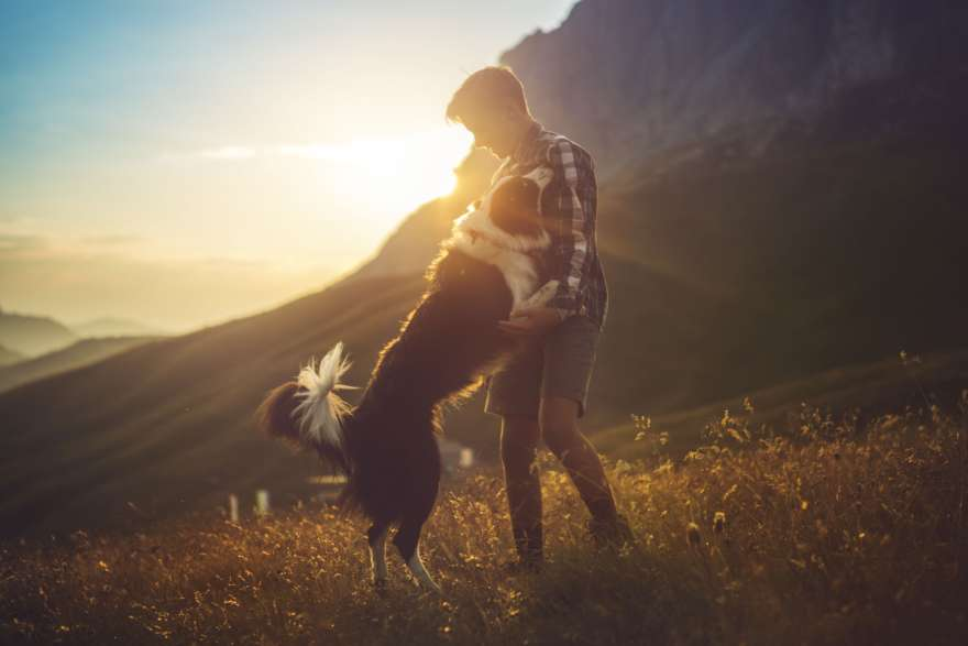 Junge spielt mit Hund bei Sonnenuntergang