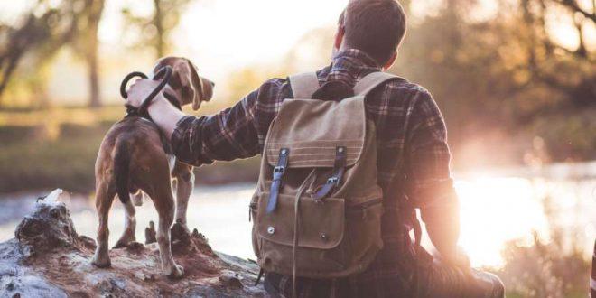 Urlaub mit Hund: Reisetipps für Bayern