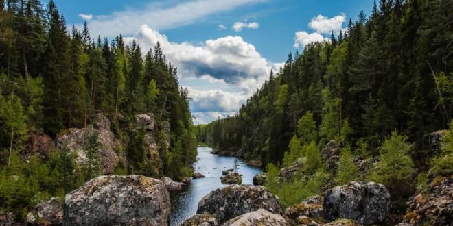 Seen, Wälder und endlose Landschaften: Reisetipps für Schweden