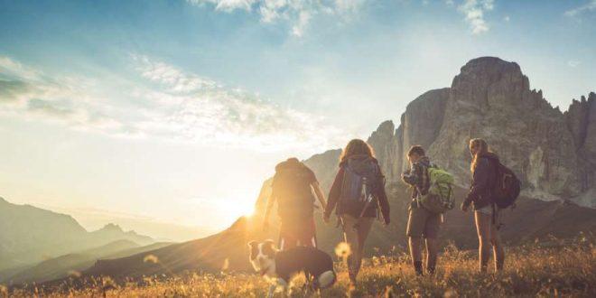 Wanderurlaub mit Hund: Die schönsten Regionen und alles, was ihr wissen solltet