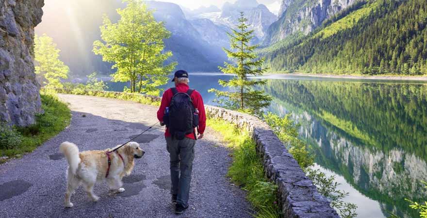 Wanderer mit Hund im Dachsteingebirge in Österreich