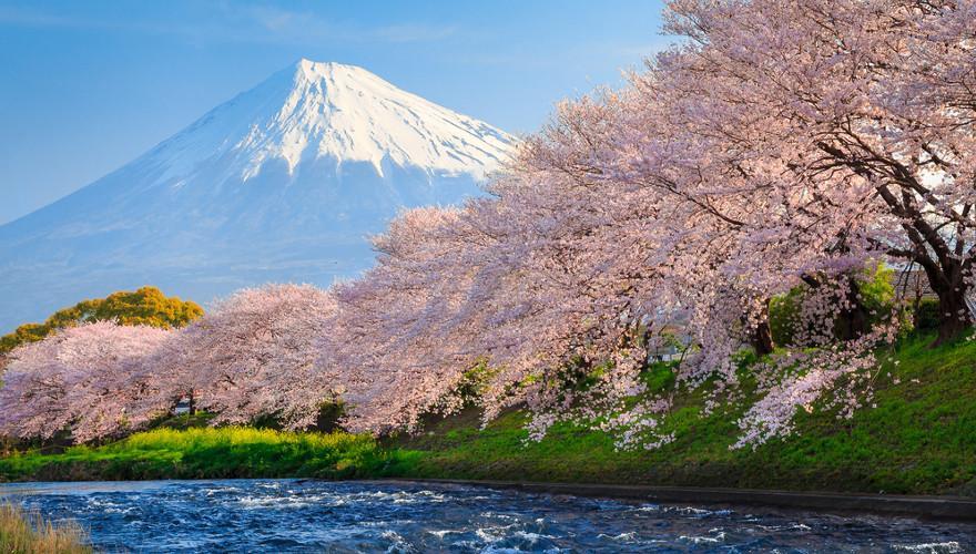 Der Mount Fiji in den japanischen Alpen.