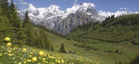 Das Schöne liegt so nah: Reisetipps für die Schweiz