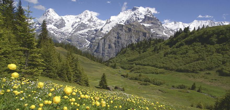 Berner Oberland in der Schweiz