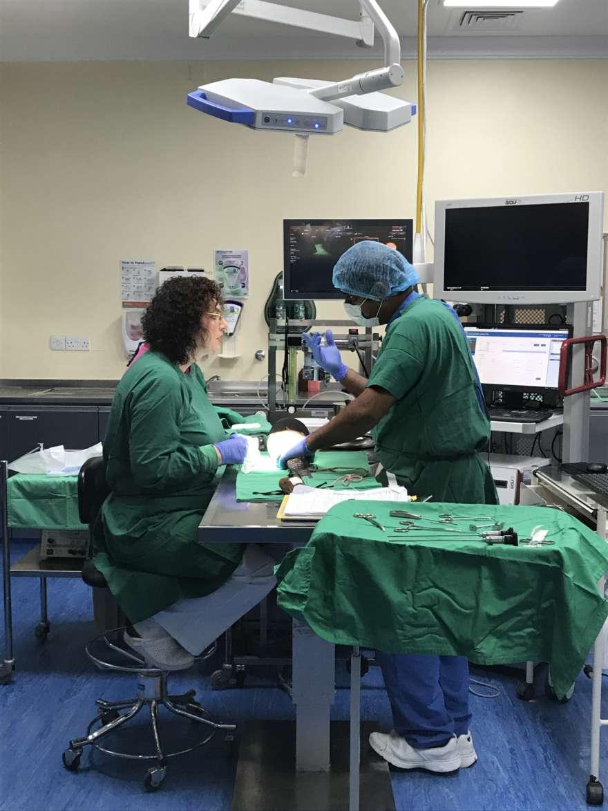 Operation-Falkenhospital