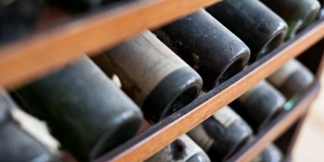 Weinreisen: Die schönsten Ziele
