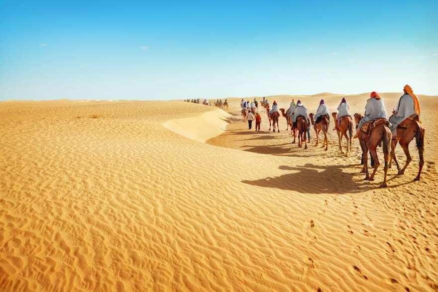 Kamelsafari Tunesien