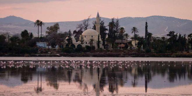 Erholungsreise und Aktivurlaub in Larnaca auf Zypern