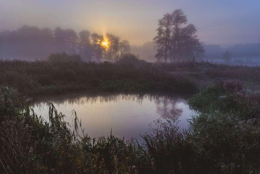 Kampinos Wald in Masowien in Polen