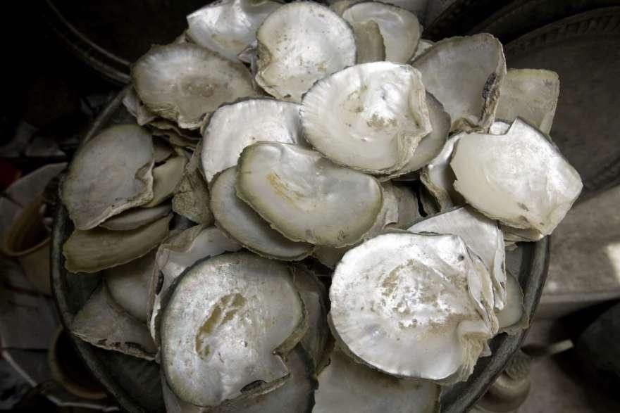 Austern im Oman