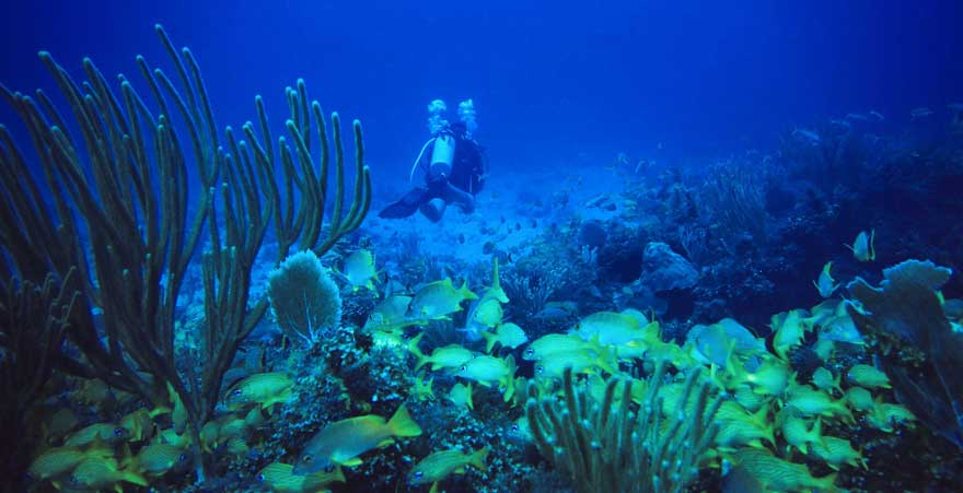 Taucher in Cayo Largo auf Kuba