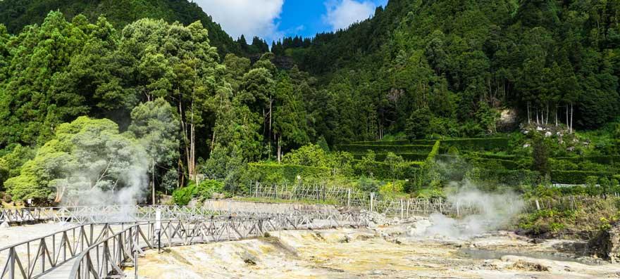 Furnas-Thermalquelle-auf-den-Azoren