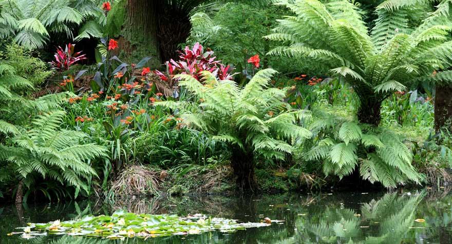 Terra-Nostra-Park-in-Furnas-auf-den-Azoren