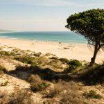 Strand Playa de Bolonia in Spanien