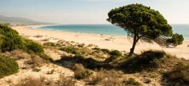 Spanien im Überblick – Die schönsten Regionen, Inseln und Städte
