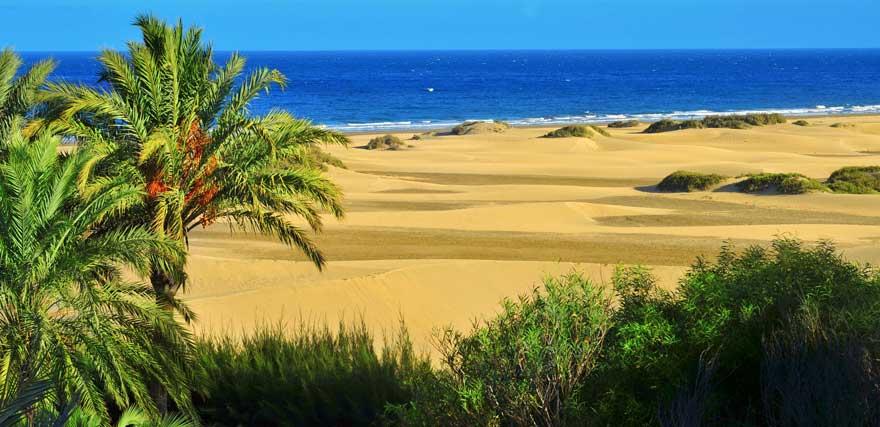 Strand Playa de Maspalomas auf Gran Canaria in Spanien
