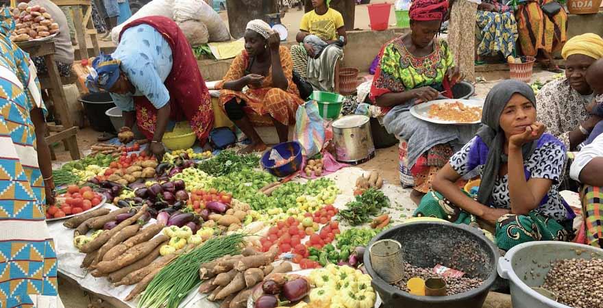 Kochkurs & Tanji Fisch-Markt in Gambia