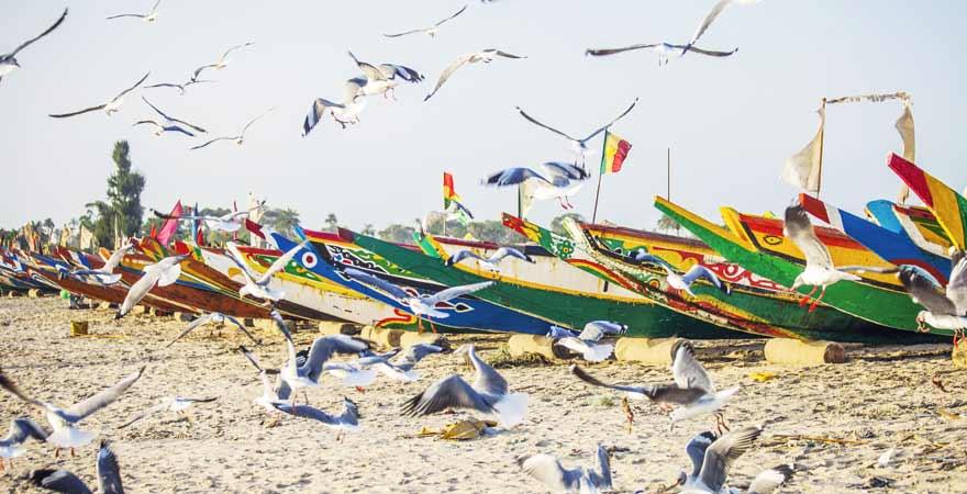 Fischerboote am Strand in Gambia