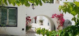 10 Gründe für einen Badeurlaub in Tunesien