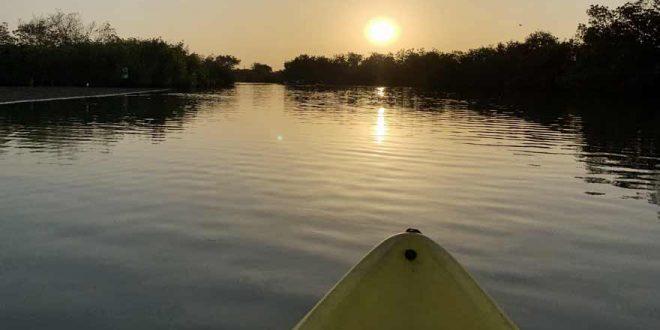 Gambia vom Wasser aus erkunden – Wir nehmen euch mit auf eine Kajaktour