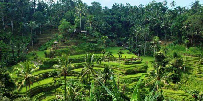 Die spannendsten und interessantesten Sehenswürdigkeiten auf Bali – Das sind Janas Favoriten!