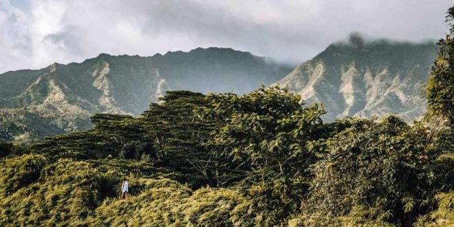 10 Gründe, warum sich eine Reise nach Hawaii lohnt