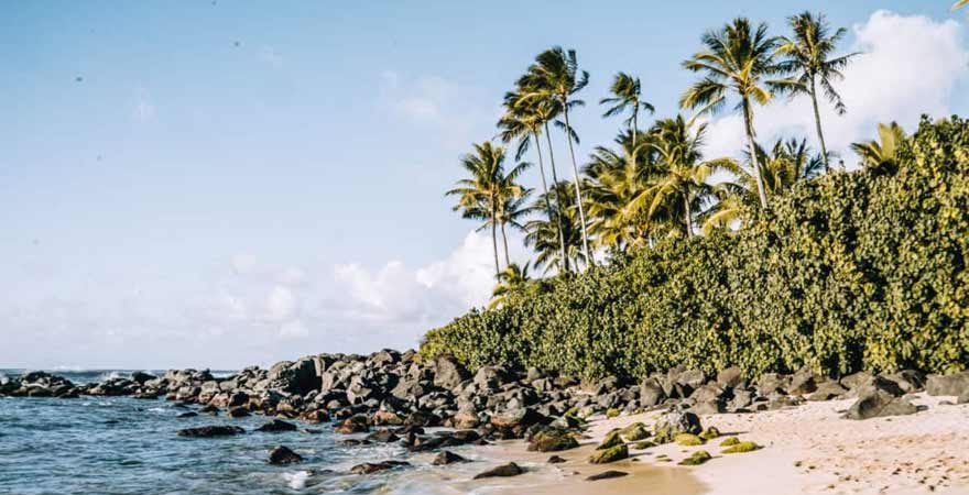 North Shore auf Oahu in Hawaii