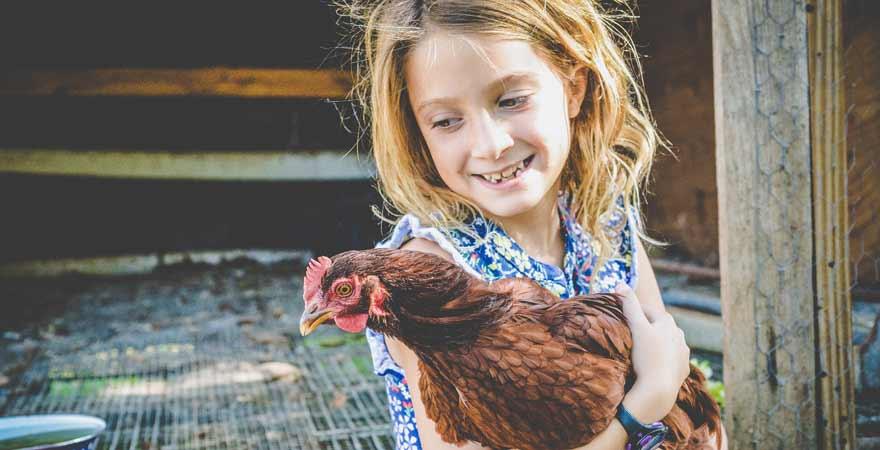 Mädchen mit Huhn auf dem Bauernhof